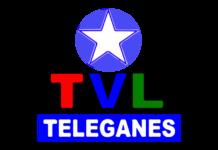 Teleganés en directo, Online