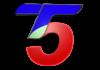 T5 Satelital en vivo, Online