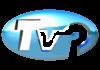 Televizija Pirot Live TV, Online