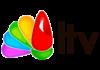 Litoral TV en vivo, Online